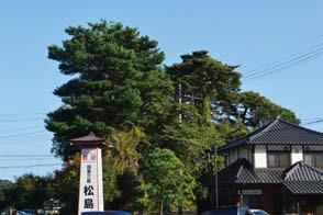 松島の自然